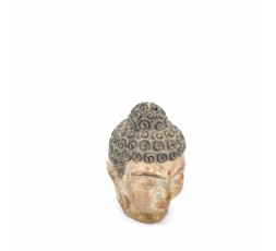 Cabeza Budha Piedra