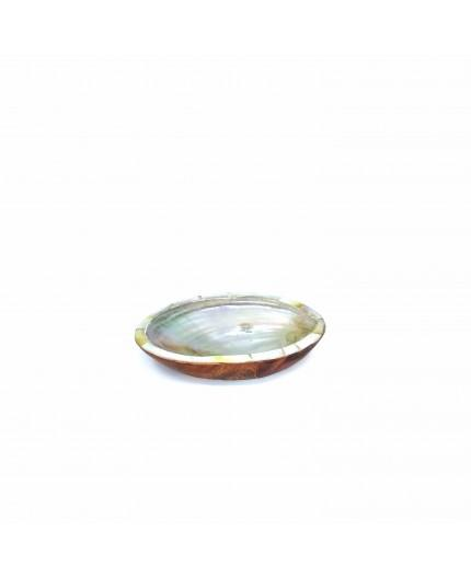 Decorative Shell Teak and Nacre Paua 01