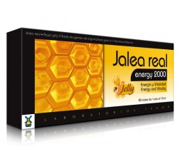 Jale Real Energy 2000
