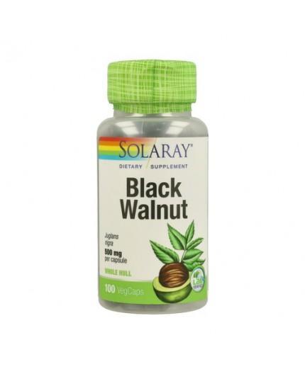 Black Walnut Hull