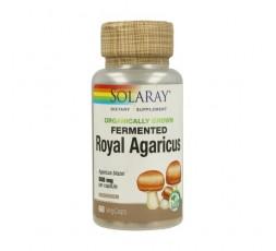 Fermented Royal Agaricus (Champiñon Sol)
