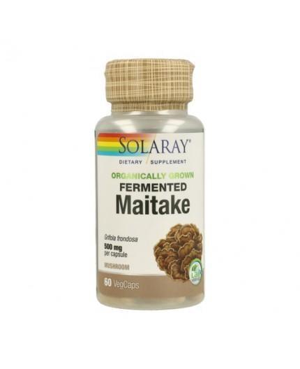 Maitake Bio Fermentado Orgánico