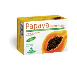 Papaya Fermentada