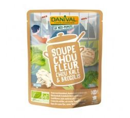 Sopa Brócoli Coliflor Y Kale