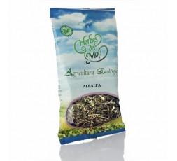 Alfalfa Planta ECO-BIO