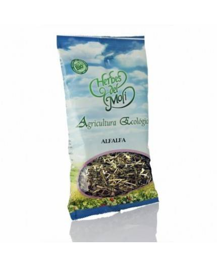 Alfalfa Planta Eco