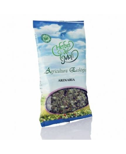 Arenaria Glabra Planta Eco