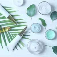 Natural, healthy and eco-responsible facial care   Sanus.Online