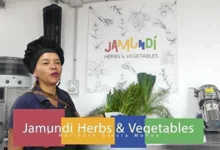 Jamundi Herbs & Vegetables - Caldo de Verduras